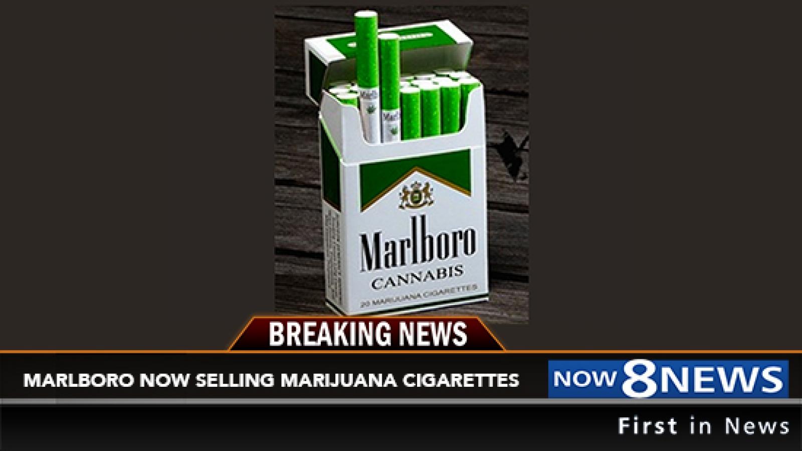 Продажа сигарет с марихуаной конопля мужское и женское