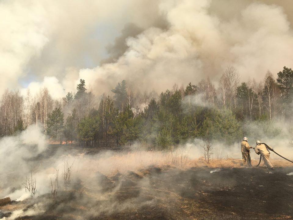 пожар_житомирщина