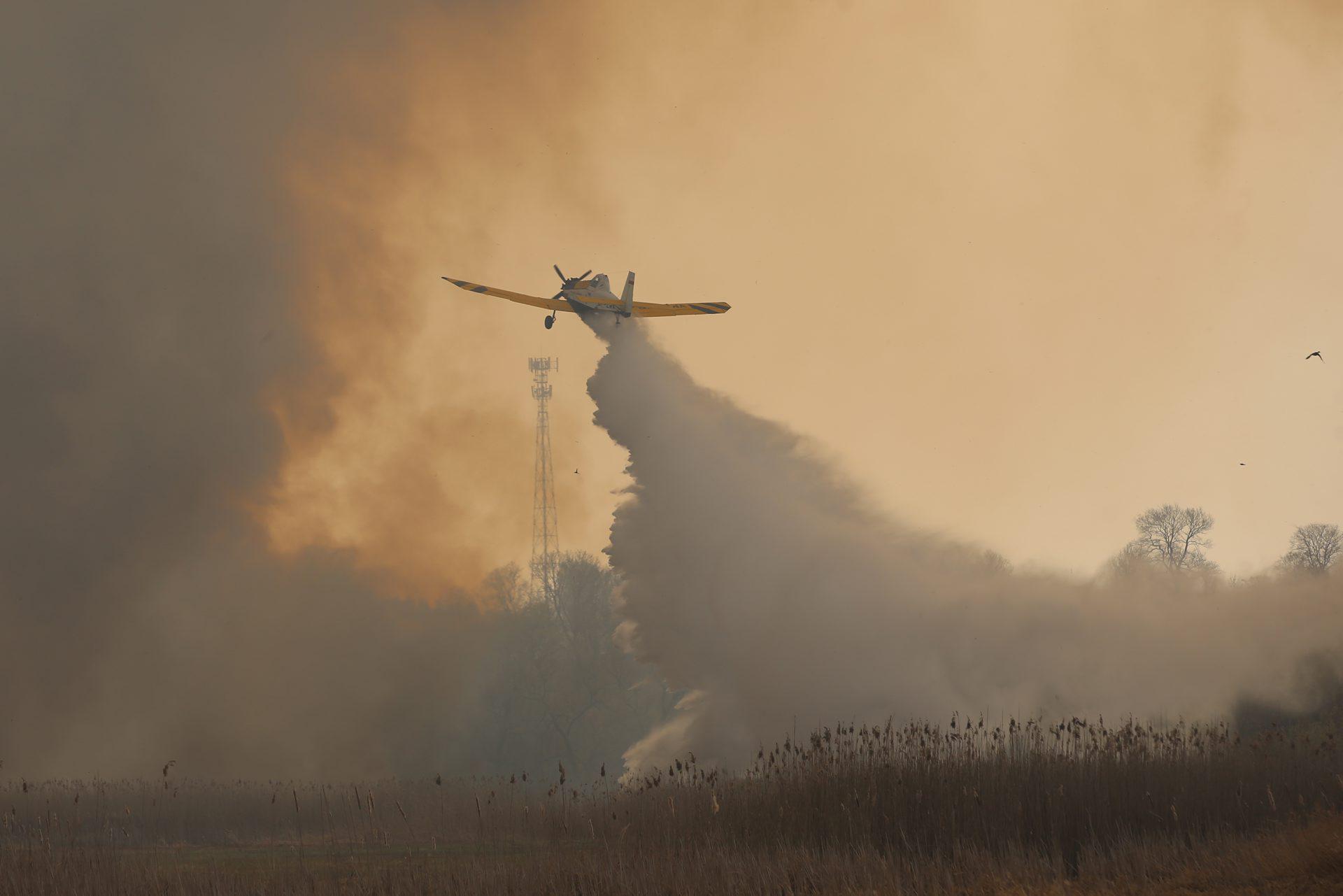 Бебжаньский национальный парк_пожар