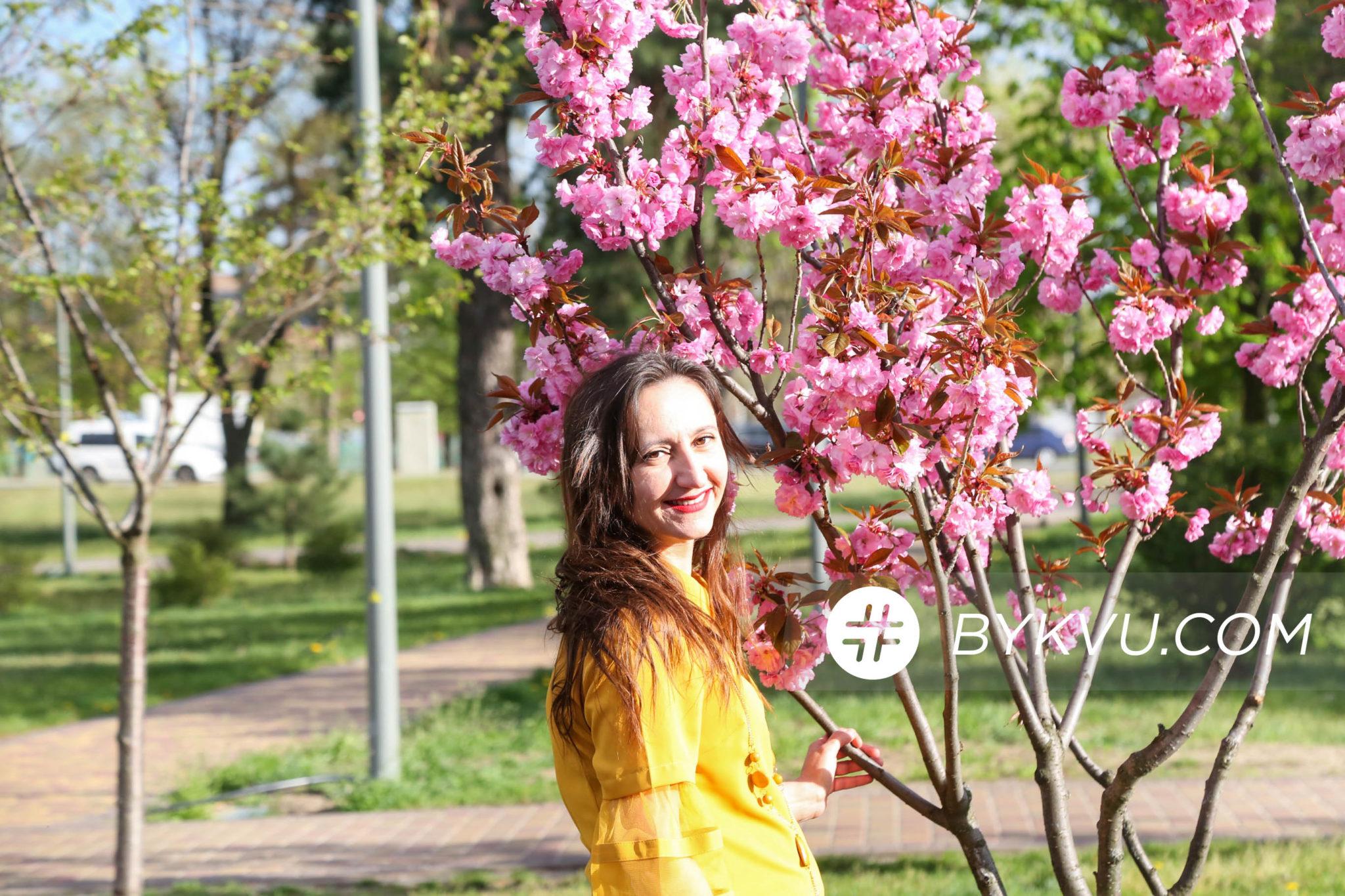 Парк_Киото Цветение_сакур
