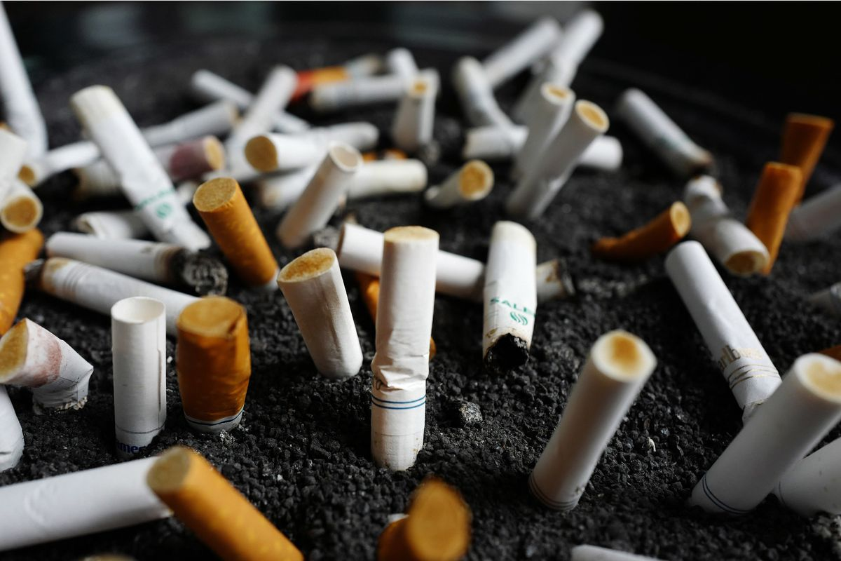 табачное изделие для курения 8 букв