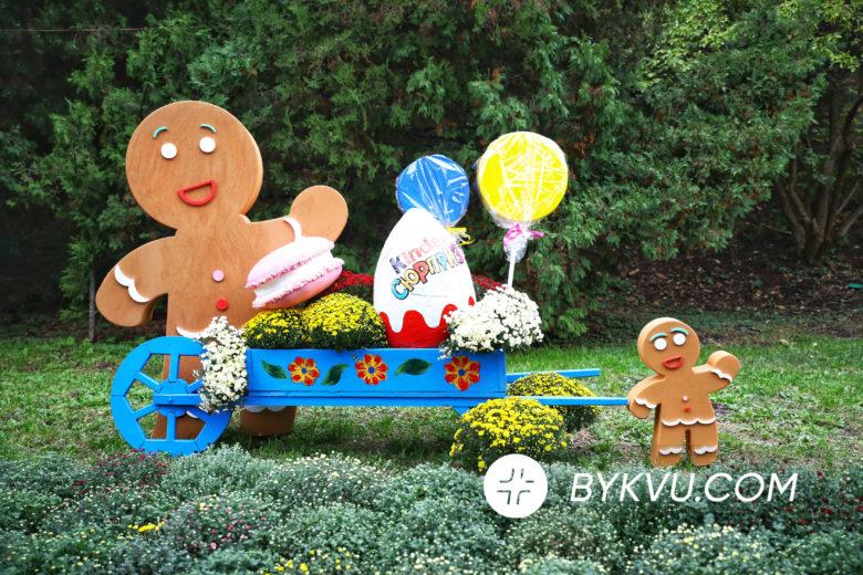 Виставка хризантем у Києві