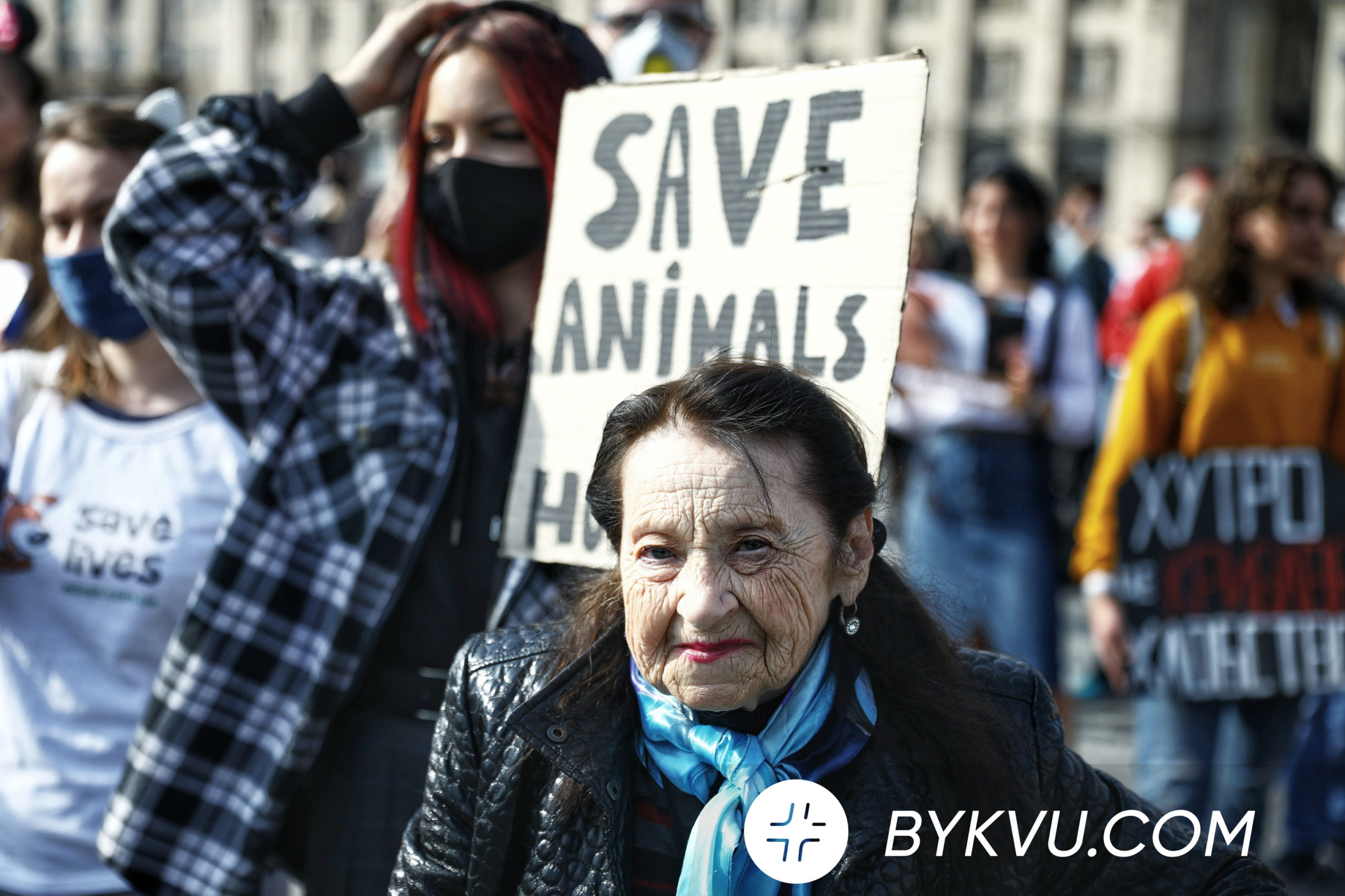 4 октября_зоозащитники_День защиты животных