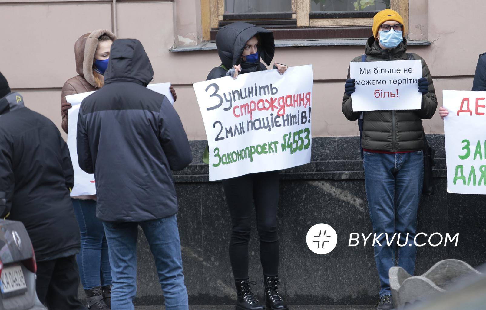 медицинский каннабис_Рада_митинг