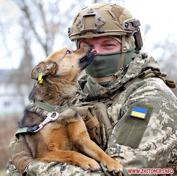 У Житомирі десантники взяли участь у фотосесії із безпритульними тваринами. ФОТО