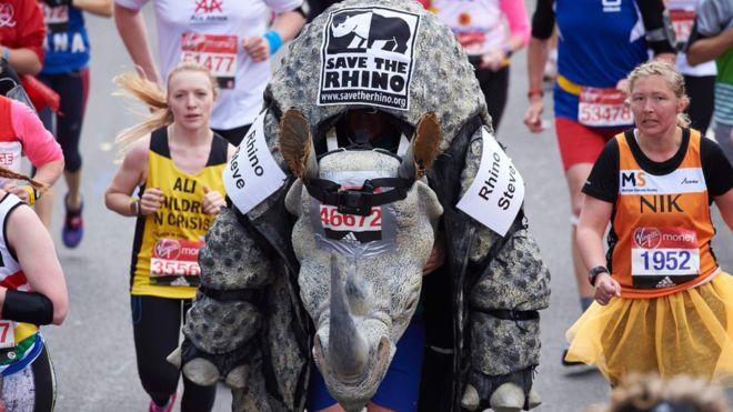 марафон17