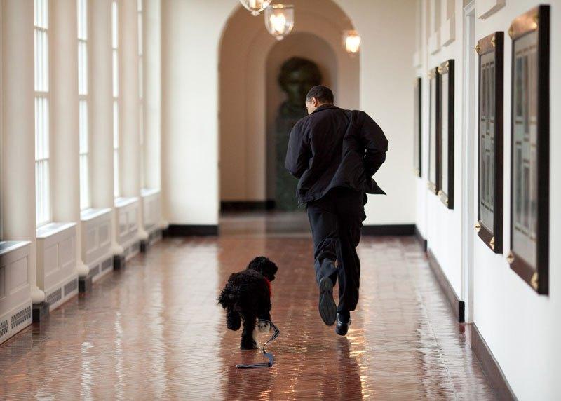 pete souza white house obama favorites 8