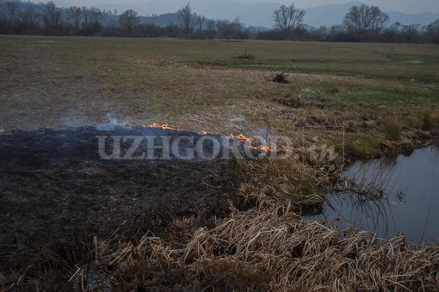 3i3g9749 fit content width watermark