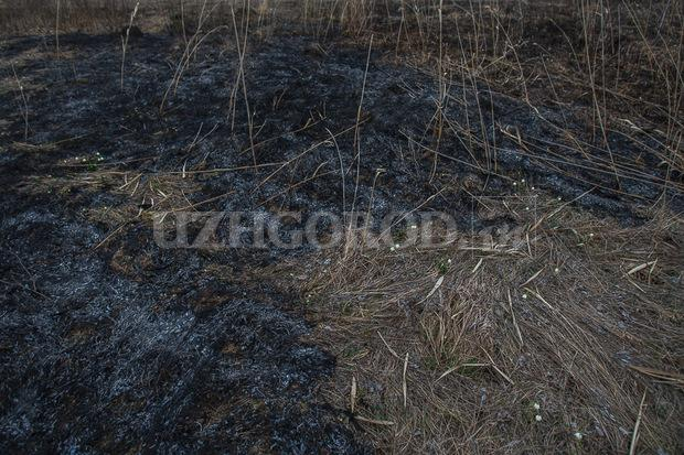 3i3g9770 fit content width watermark