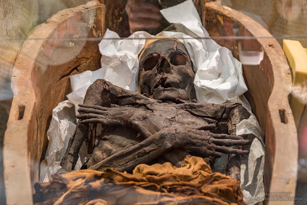Киев. Древнеегипетские мумии_14