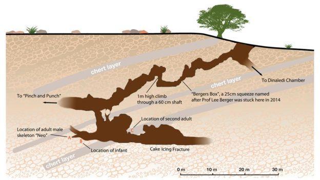 Пещера, в которой были обнаружены останки Homo naledi