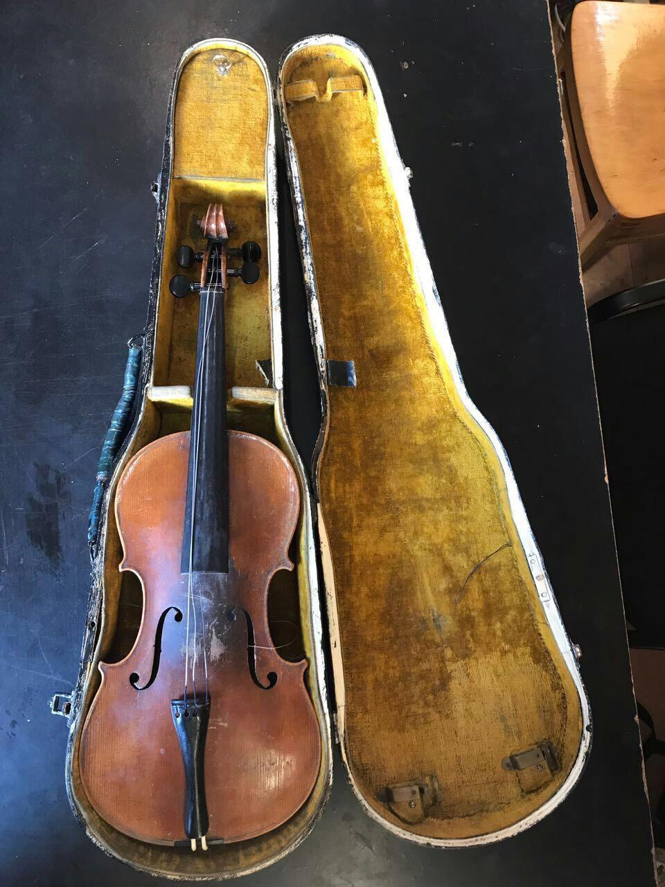 Пограничники обнаружили скрипку Страдивари