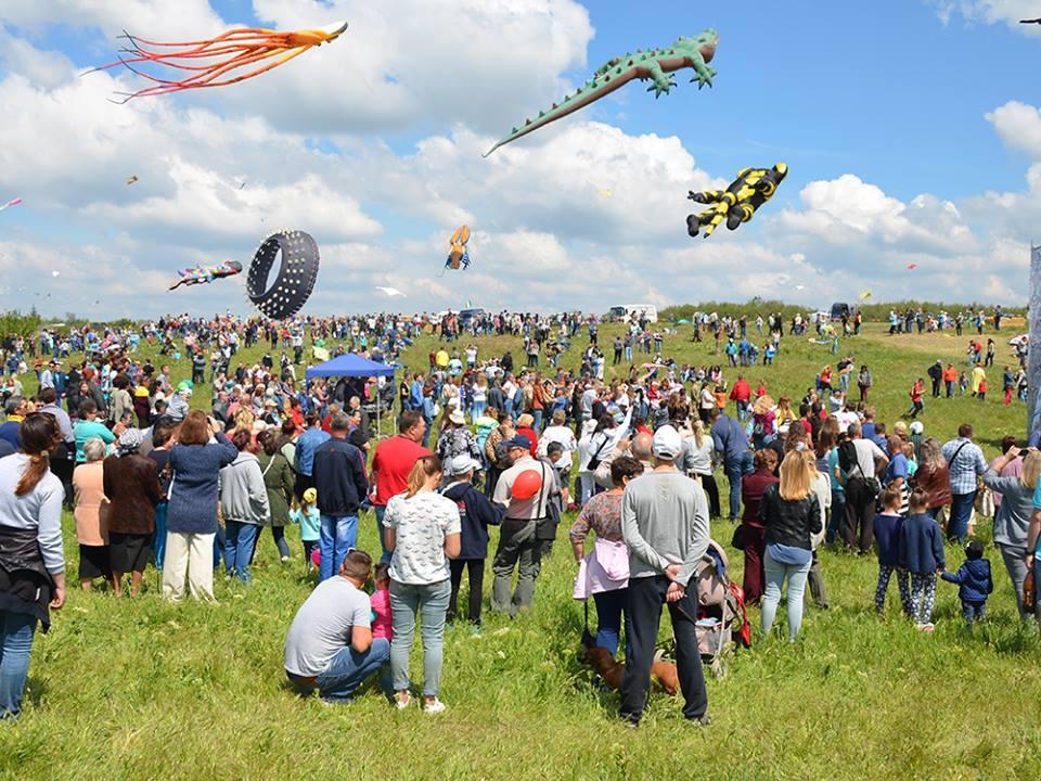 Фестиваль воздушных змеев_1