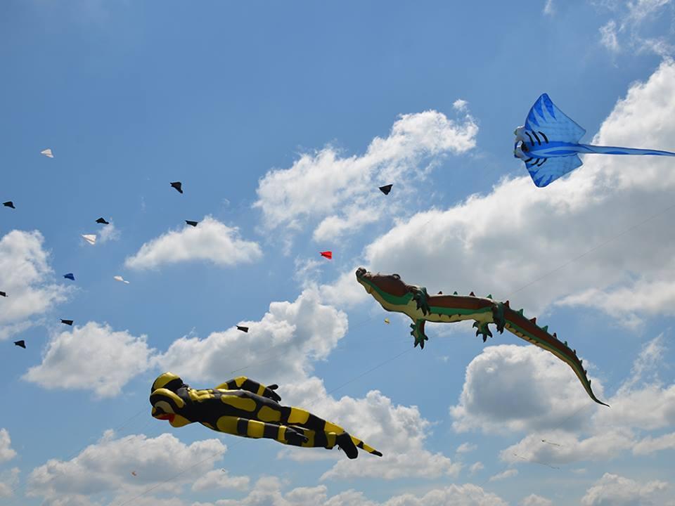 Фестиваль воздушных змеев_4