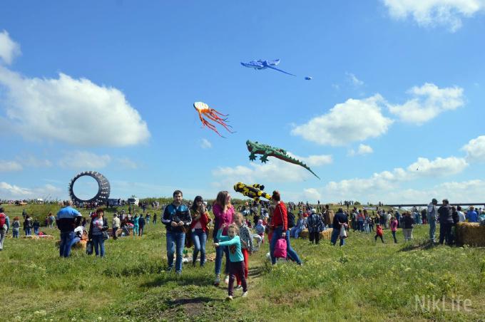 Фестиваль воздушных змеев_6