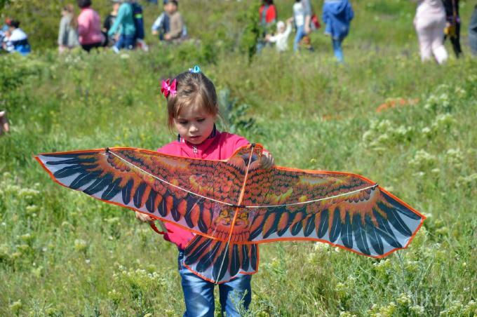 Фестиваль воздушных змеев_9