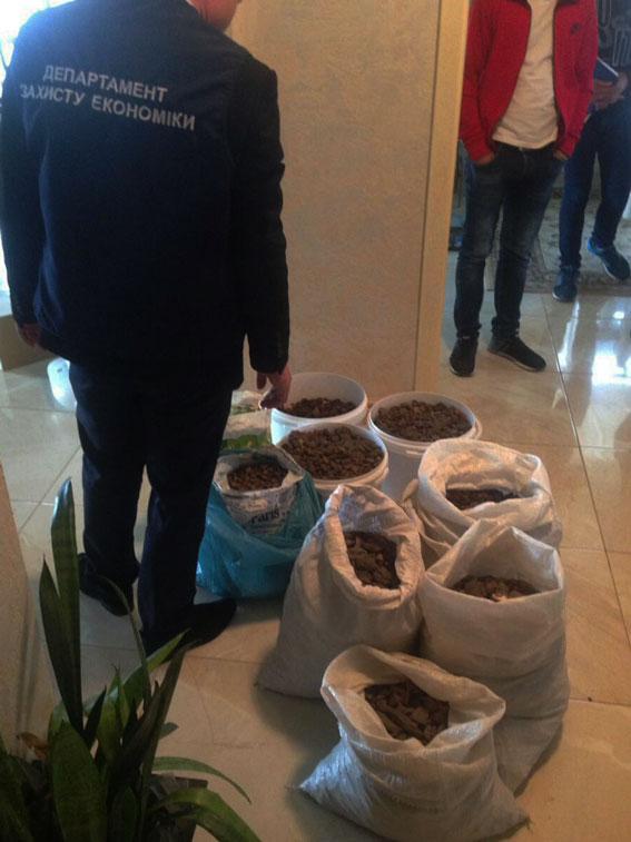 В Ровенской области во время обысков обнаружили янтаря на 2 млн грн