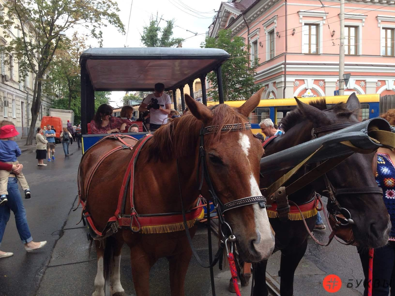 Парад трамваев_17