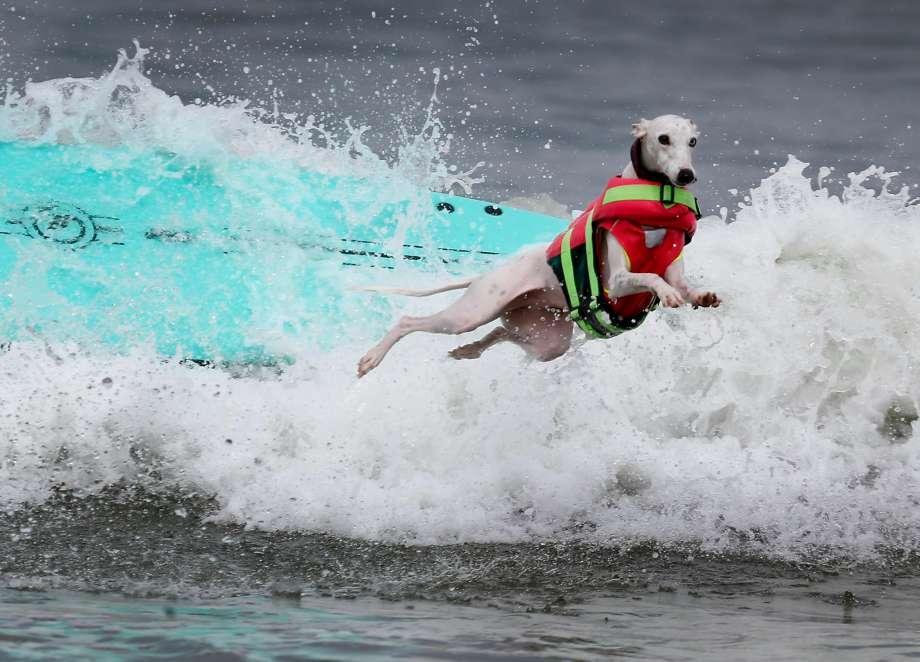 Серфинг14