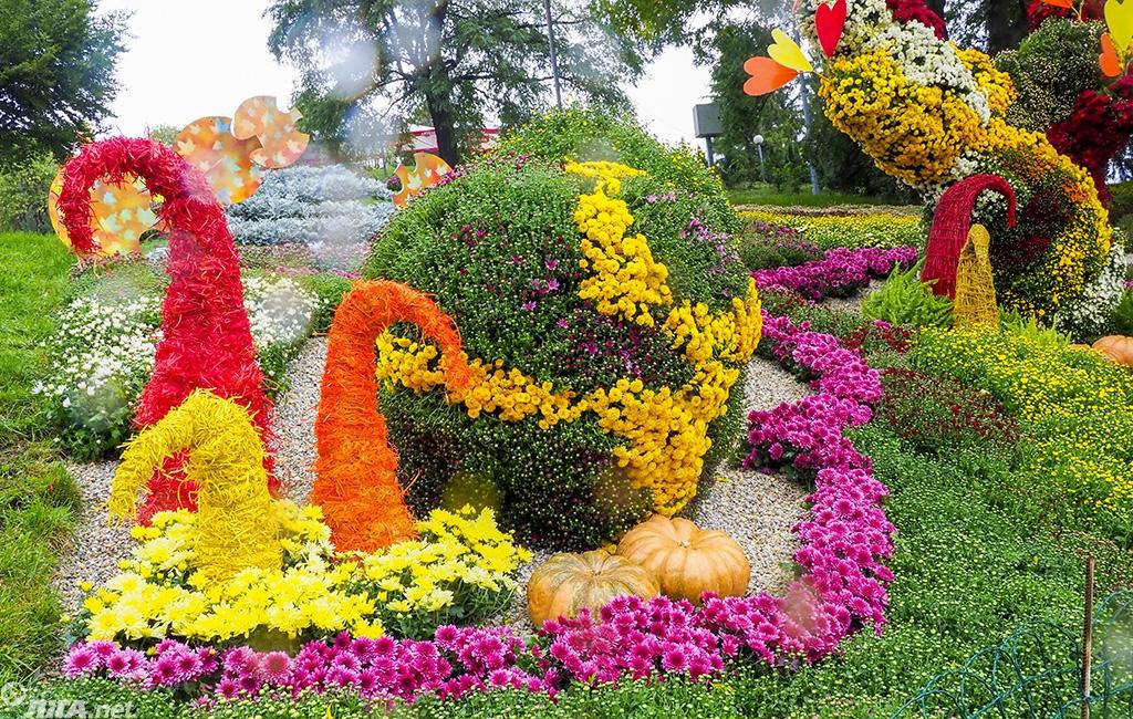 Цветы15