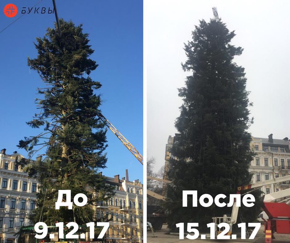 елка1