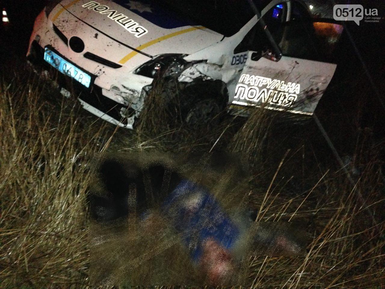 Инцидент в Николаевской области