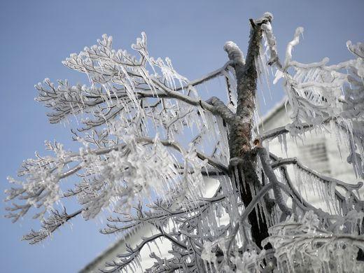 636505978186309238 AP Deep Freeze Maryland