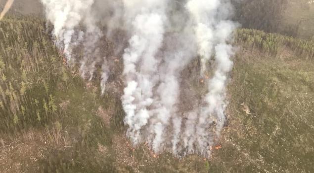 Пожар в Высоких Татрах.