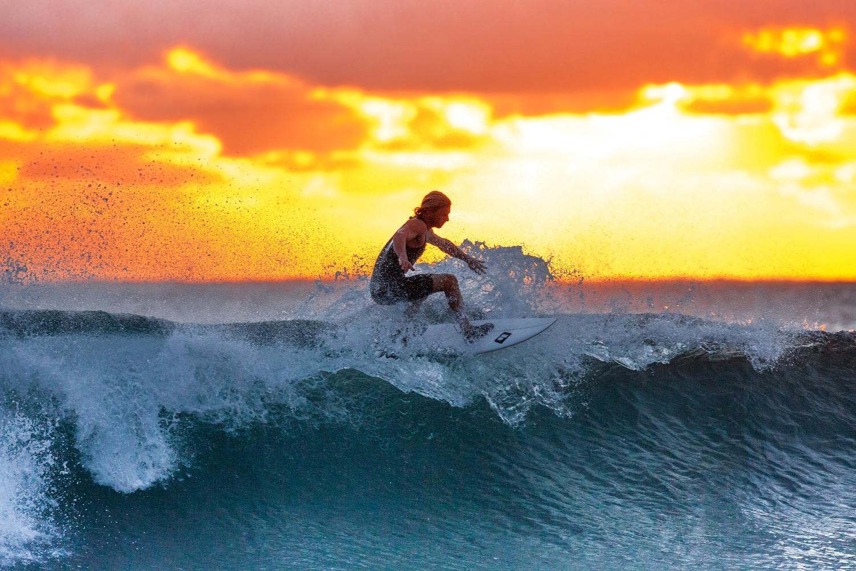 surfer 2212948
