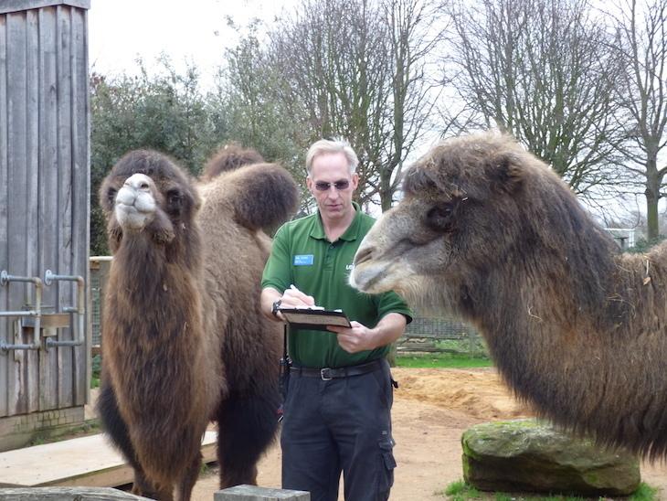 зоопарк15