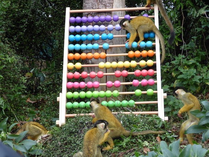 зоопарк19