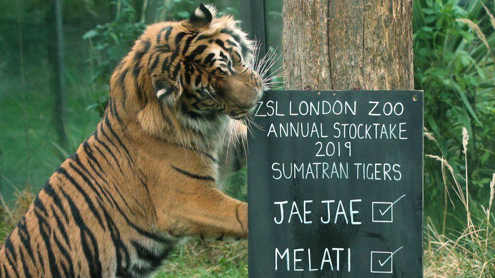 зоопарк2