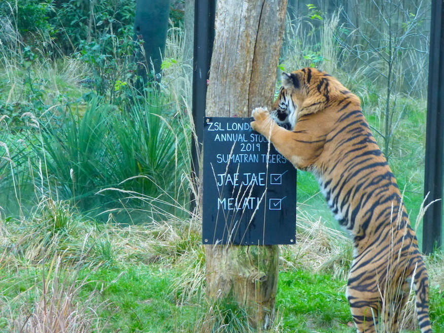 зоопарк9