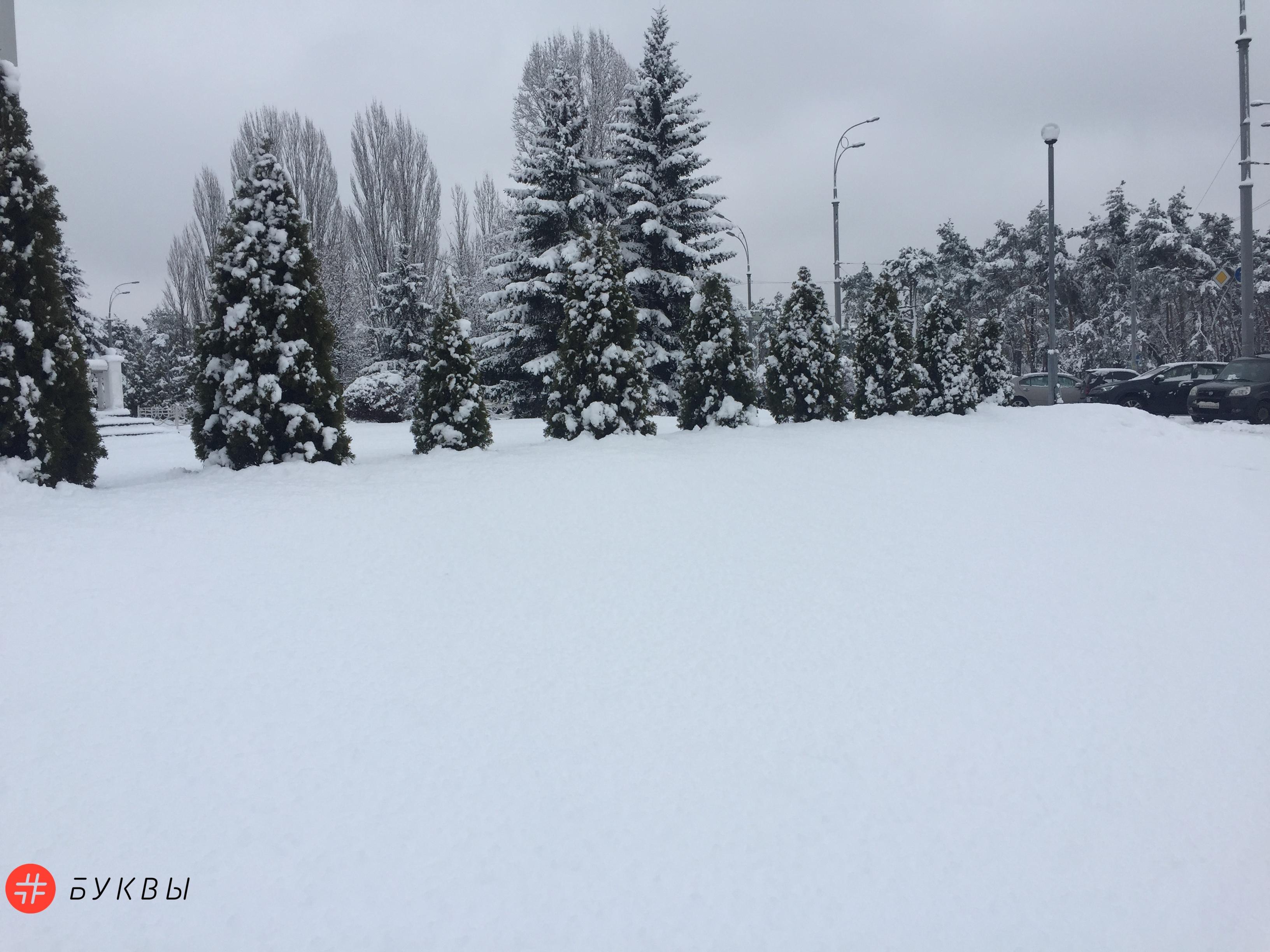 снег4