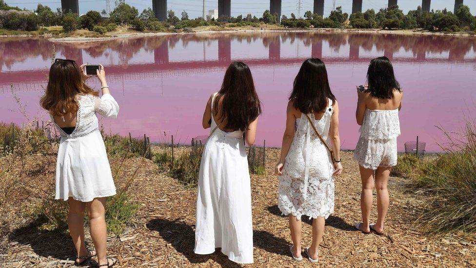 розовое озеро_мельбурн