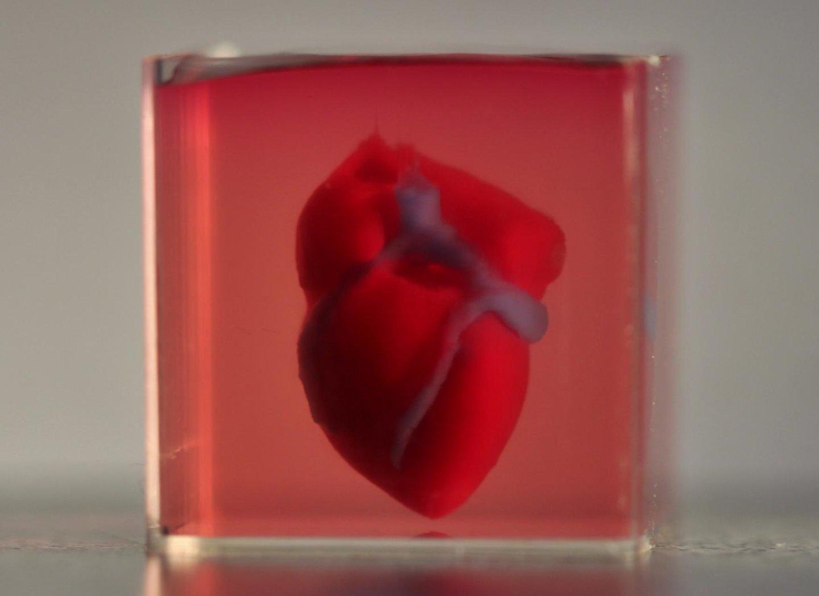 сердце3