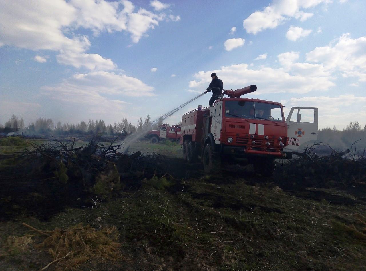 пожар_лес_черниговская обл