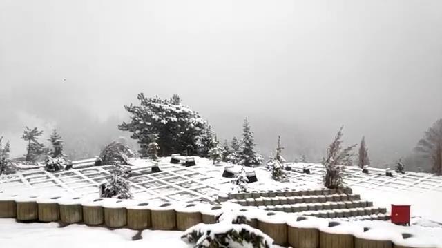 снег5