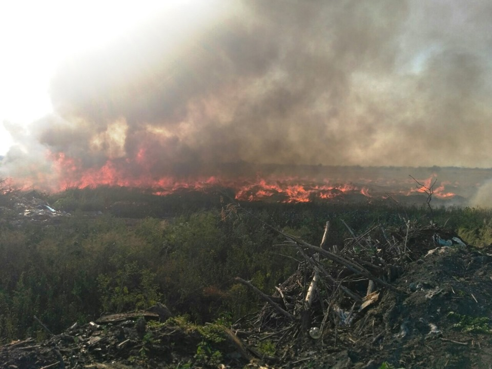 пожар_свалка_черкассы