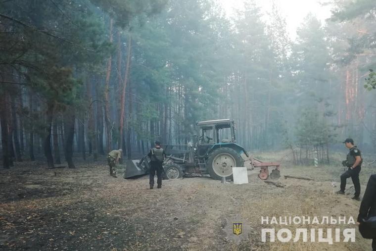 лес_станица луганская